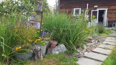 One of my garden spots
